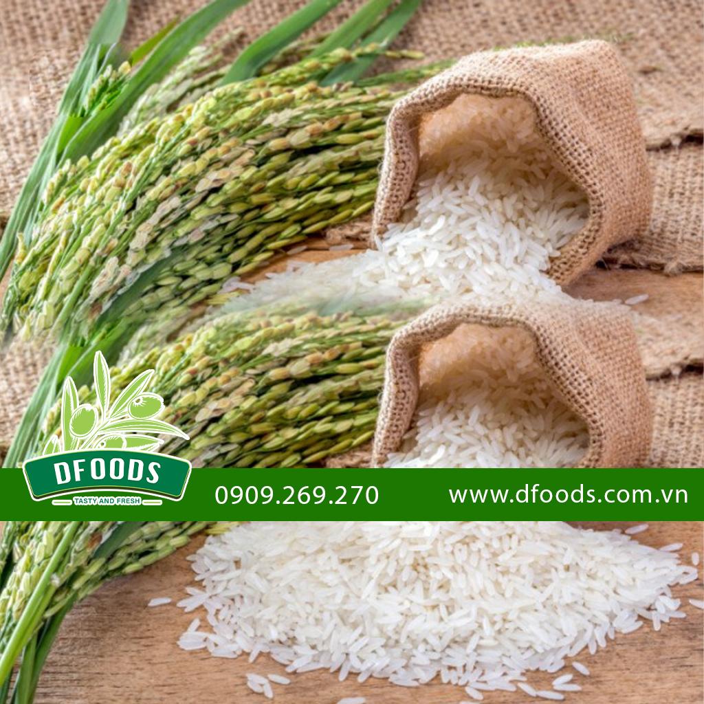 Hình ảnh Gạo Ponni