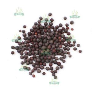 Hạt mù tạt đen - Mustard Seed Black
